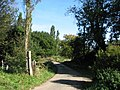 The road to Yarrow House - geograph.org.uk - 574634.jpg