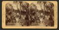 The silvery draperies of Daytona, Florida, by Underwood & Underwood 2.png