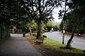 The top of Wimbledon Hill - geograph.org.uk - 2168502.jpg