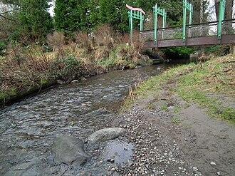 Thornton Creek - Thornton Creek near Meadowbrook Pond