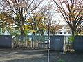 Tokyo Gakugei University Setagaya Junior High School.JPG