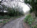Track from the farm - geograph.org.uk - 1577311.jpg