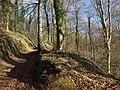 Track up Breakheart Hill - geograph.org.uk - 1655368.jpg