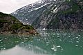 Tracy Arm Fjord - panoramio - Jack Borno (6).jpg