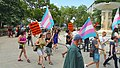Trans Solidarity Rally and March 55443 (17793338222).jpg