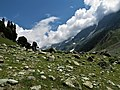 Trekking to the Glaciers of Sonmarg.jpg