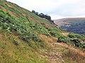 Troed-y-rhiw mountain - geograph.org.uk - 30803.jpg