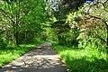 Tukwila, WA - Green River Trail just south of S 117th St.jpg