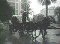 Tunis sous la neigne - 1950s.jpg