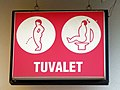 Turkish toilet sign.jpg