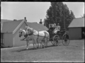 Two women and a baby seated alongside the driver of a two-horse buggy at Mendip Hills, Hurunui District. ATLIB 285683.png