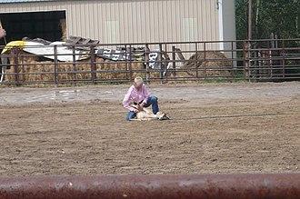 Goat tying - Image: Tying up goats