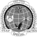 Special Tactics Officer (STO) Flash and Crest