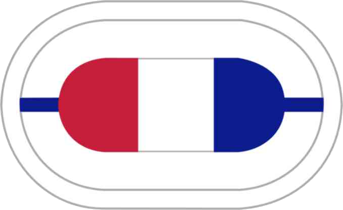 US Army 1st BN-506th INF Reg Oval