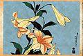Ukiyoe calendar June 2010 hokusai -- yuri.jpg