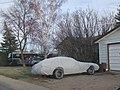 Undercover Pontiac Firebird (6972479684).jpg