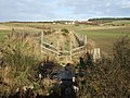 Upstream Thistleycrook Burn - geograph.org.uk - 619077.jpg