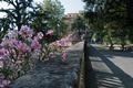 Veduta del Parco di Villa Scassi.tif