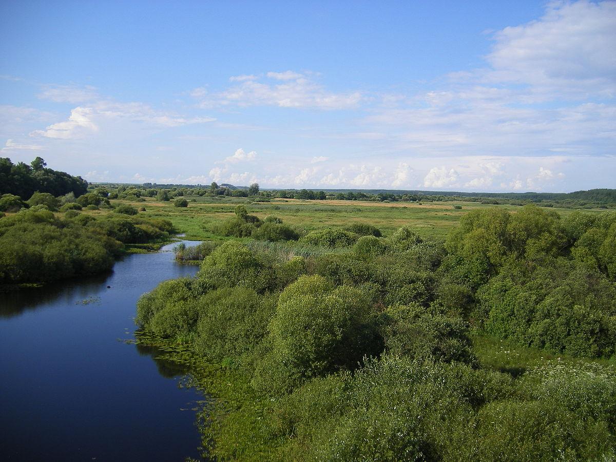 Куда течет река в брянске схема фото 351