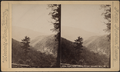 View from Laurel House, Catskill Mts., N.Y, by Webster & Albee.png
