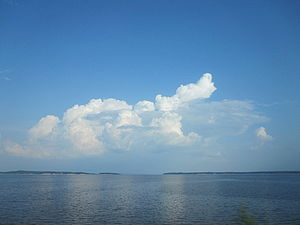 View of Toledo Bend between LA and TX IMG 1806.JPG