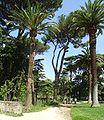 Villa Celimontana 277.jpg