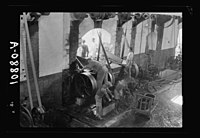Vintage activities at Richon-le-Zion, Aug. 1939. Dumping grapes into the hopper for crushing & carting away refuse LOC matpc.19775.jpg