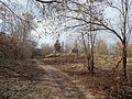 Volodarskiy rayon, Bryansk, Bryanskaya oblast', Russia - panoramio (61).jpg