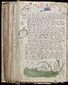 Voynich Manuscript (150).jpg