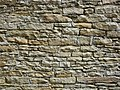 Wall in Carleton 03.jpg
