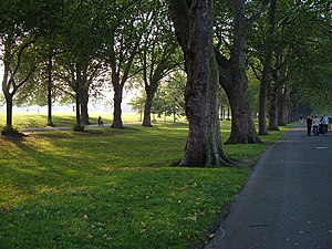 English: Wandsworth Park Seen from the walkway...