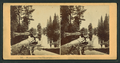 Washington Column, Yosemite, Cal, from Robert N. Dennis collection of stereoscopic views.png