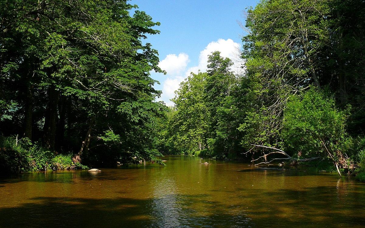 River: Watauga River