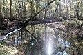 Water flowing 1 (6466590927).jpg