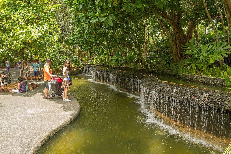 Botanic Gardens of Singapore
