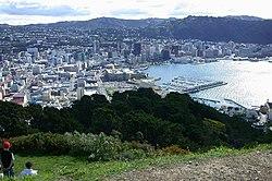 Wellington from Mount Victoria.