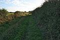 Wheatgrass Lane near Caythorpe - geograph.org.uk - 256850.jpg