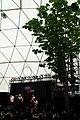 WhiteRock 20080721-2, Sapporo City Jazz 2008.jpg
