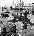 White and black dockworkers rest on cotton bales in New Orleans in 1902.jpg