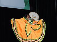 Wikimanía 2015 - Day 3 - Opening Ceremony - México DF 8.jpg
