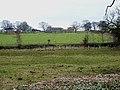 Wild Hill Farm, Hunton - geograph.org.uk - 139379.jpg