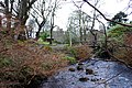Winter in Dunvegan Castle gardens - geograph.org.uk - 395025.jpg