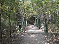 Wolf River Trails Lucius Burch Natural Area Memphis TN 02.jpg