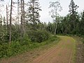 Wood Islands Branch Trail, PEI (28748911120).jpg