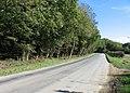Wood Lane Greetham - geograph.org.uk - 2160885.jpg