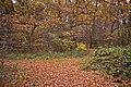 Woodland path, Cheyne Walk Open Space, London N21 - geograph.org.uk - 1047996.jpg