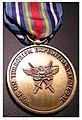 Wot medal.JPG
