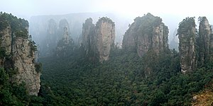 Guizhou Plateau broadleaf and mixed forests - Broadleaf and mixed forests on karst topography in Wulingyuan