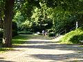 Wuppertal Hardt 2013 542.JPG
