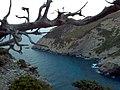 Xarakas - panoramio.jpg